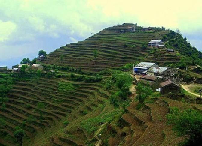 Chipling-Terraces
