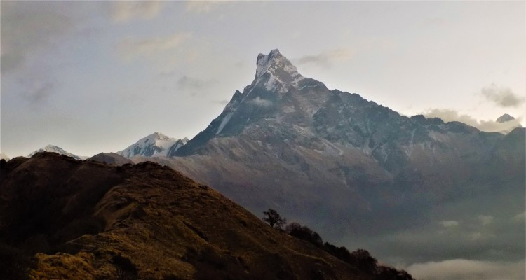 Machhapuchre as seen from Mardi Himal view point