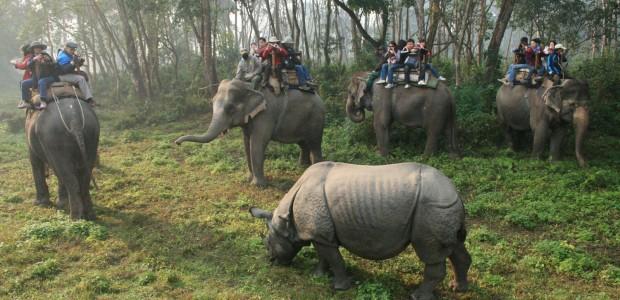 Wildlife weekend breaks Nepal