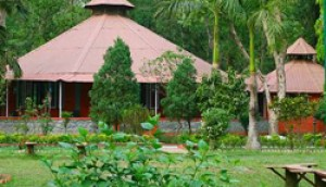 Fewa Wildlife Resort