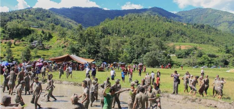 Rice Plantation festival in Nepal-nuwakotRopain vitof nepal