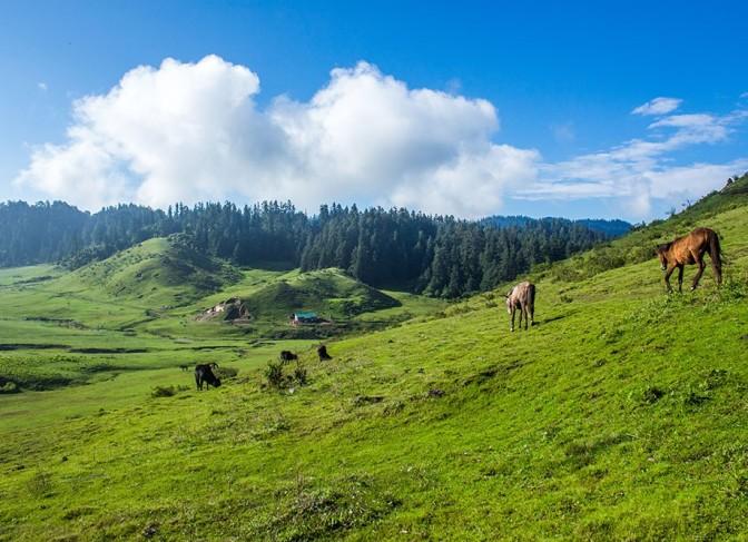 Rara to Khaptad trekking