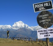 Panoramic view from Poon Hill