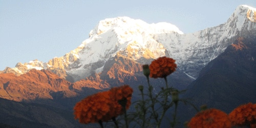 Annapurna south (7219m) and Himchuli (6446m)