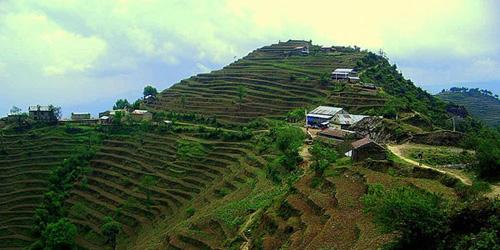 Thadepati in Langtang Gosaikunda Melamchi Trekking