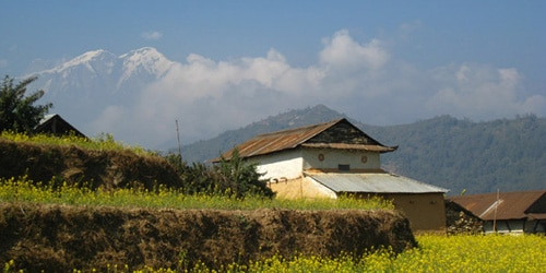 Local house, green hill and Annapurna Mountain