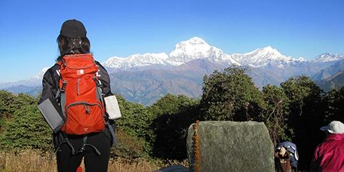 Poon Hill Trekking- Below the Gurung Hill