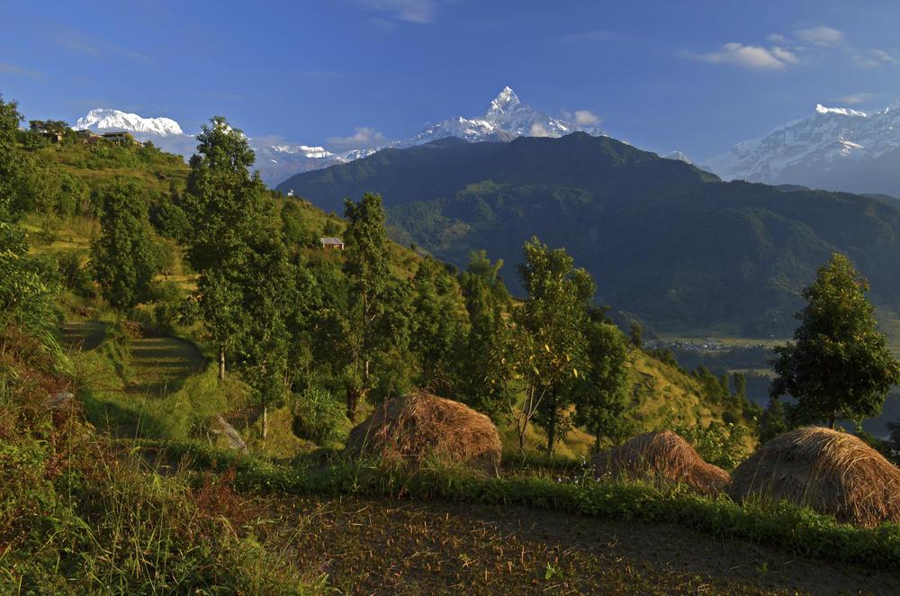 Dhampus Lowang Home stay Trek-  View of Annapurna Mountain Range