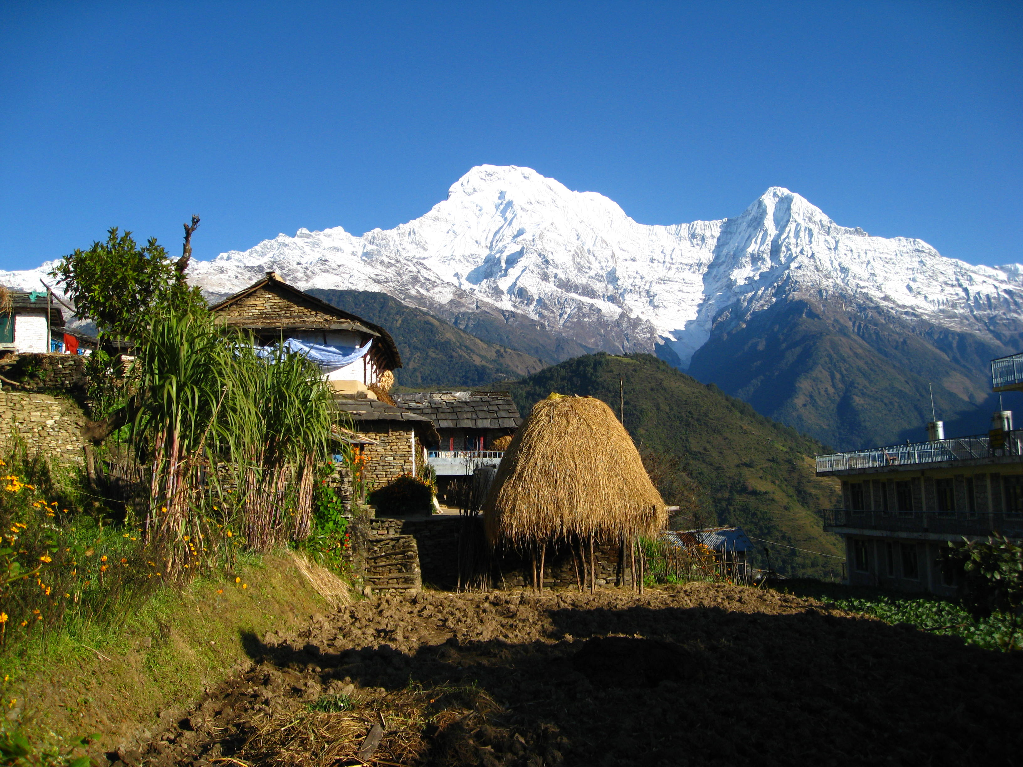 Dhampus Lowang Home stay Trek- Typical  Gurung Eco Village