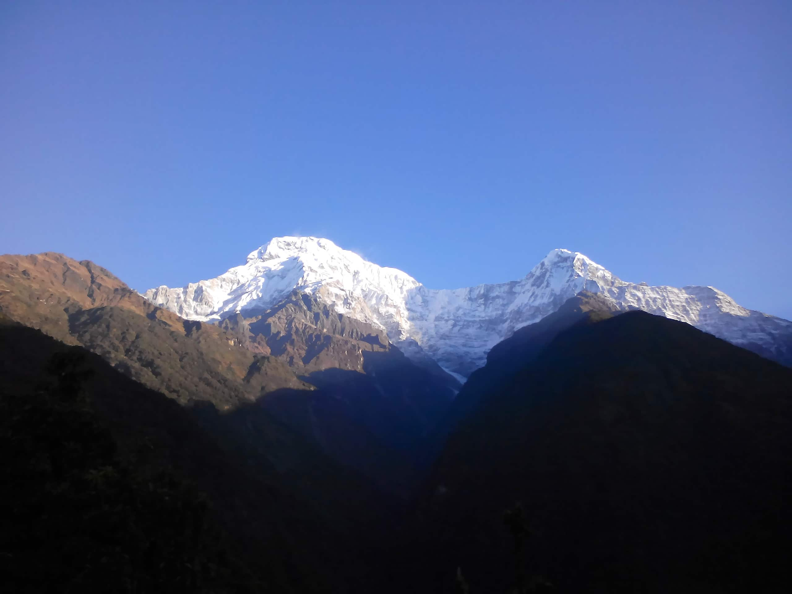 Annapurna view trek- Annapurna South & Himchuli