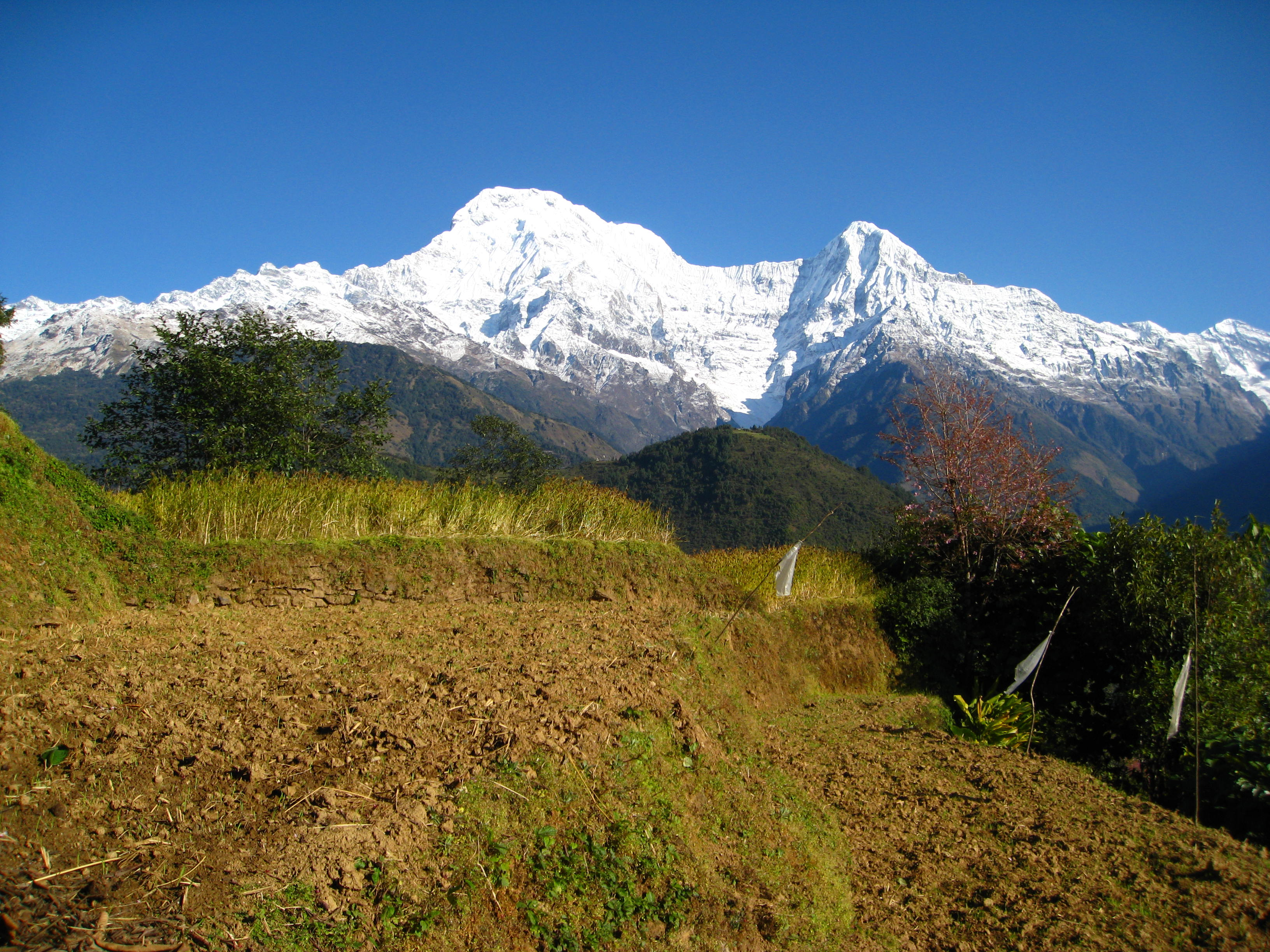 Annapurna sunrise trek- Ghandruk Village