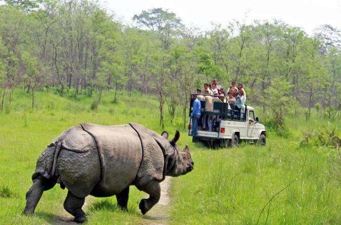 Jungle safari Nepal- Jeep Riding in Chitwan National Park
