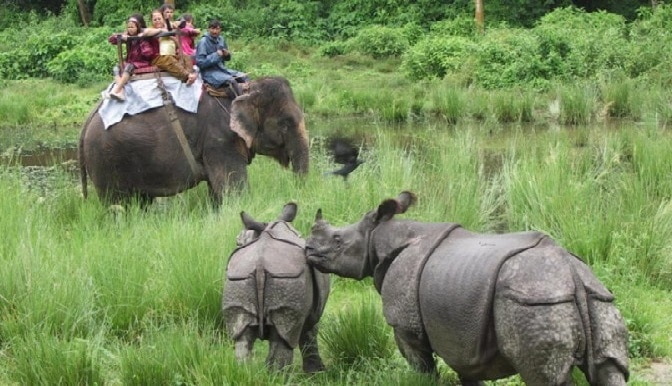 Best Nepal Tour - Jungle safari in chitwan